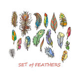 Vector Ornate Set of Stylized and Abstract Feathers. Stock Photo