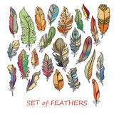 Vector Ornate Set of Stylized and Abstract Feathers. Royalty Free Stock Photo