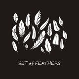 Vector Ornate Set of Stylized and Silhouette Abstract. Vector Ornate Set of Stylized and Abstract Silhouette Feathers. Elements for Design and Coloring Pages Royalty Free Stock Images
