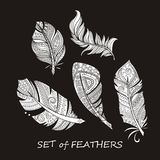 Vector Ornate Set of Stylized and Silhouette Abstract. Vector Ornate Set of Stylized and Abstract Silhouette Zentangle Feathers. Elements for Design and Stock Photography