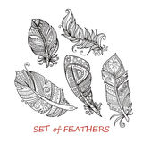 Vector Ornate Set of Stylized and Abstract Zentangle Feathers. Elements for Design and Coloring Pages royalty free illustration