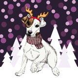 Vector os chifres vestindo tiara e lenço da rena do cão do terrier de Russel do jaque Isolado em árvores nevado e em chuveirinhos Fotos de Stock