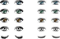 Vector os olhos do homem e da mulher na cor diferente ilustração stock