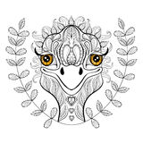Vector ostrich for adult coloring page. Hand drawn funny ostrich Royalty Free Stock Image