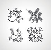Vector outline drawing natural set of four silhouettes Stock Photo