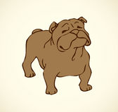 Vector outline drawing. Purebred dogs and mongrels Royalty Free Stock Photography