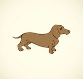 Vector outline drawing. Purebred dogs and mongrels Royalty Free Stock Photos