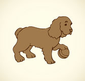 Vector outline drawing. Purebred dogs and mongrels royalty free illustration