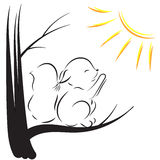 Vector outline drawing of a squirrel on the tree, pulls legs to the sun Stock Photography