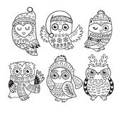 Vector outline set with Christmas owls Stock Photos