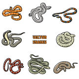 Vector outline set of snakes. Royalty Free Stock Image