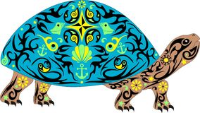 Vector overland turtle, reptile with the drawing on a body, an animal with a pattern, an armor with sea cockleshells and anchors, Stock Image