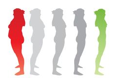 Vector overweight obese female vs slim fit healthy body. Vector conceptual fat overweight obese female vs slim fit healthy body after weight loss or diet with royalty free illustration