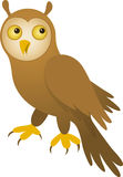 Vector Owl. Vector illustration of brown owl Royalty Free Stock Images