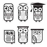 Vector owl collection Stock Image