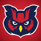 Owl head mascot. Vector of Owl head mascot, suitable for your team, club of school Stock Photo