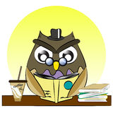 A vector of owl reading book with book and ice coffee Stock Image