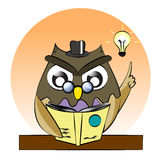 A vector of owl reading book,owl genius,clever owl read book Stock Image