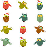 Vector owls. Set of cute owls in different poses royalty free illustration