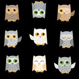 Vector owls on a black background. Cute  owls on a black background Royalty Free Stock Photography
