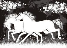 Vector paard vector illustratie