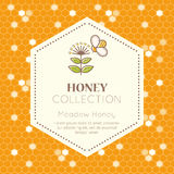 Vector packaging design - natural honey collection. Vector packaging template with seamless patterns. Natural honey collection (meadow honey). Warm color palette royalty free illustration