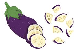 Vector painterly aubergine, editable, scalable illustratie vector illustratie