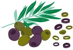 Vector painterly black and green oilves; editable, scalable illustration. vector illustration