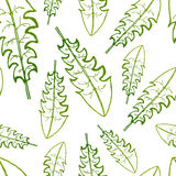 Vector painting of green grass seamless pattern background  with hand drawn Stock Photo