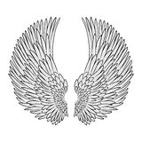Vector pair of angel wings in contour Royalty Free Stock Image