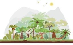 Vector a paisagem tropical da floresta úmida com palmas e outras árvores tropicais Ilustração panorâmico da floresta tropical lis ilustração stock