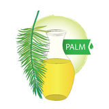 Vector Palm branch and bottle with palm oil isolated on white. Concept with palm oil for food, pharmacy or cosmetic design. Stock Images