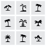Vector palm icon set. On grey background Royalty Free Stock Photo