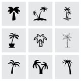 Vector palm icon set Stock Photos