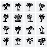 Vector Palm icon set Royalty Free Stock Photo