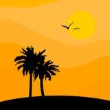 VECTOR PALM ISLAND & SUN. Palm Island & Sun - Vector Background Illustration Royalty Free Stock Photography