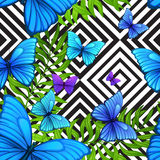 Vector  palm leaves tropical pattern with blue Stock Image