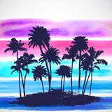 Vector Palm trees illustration Royalty Free Stock Image
