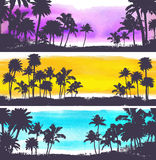 Vector Palm trees illustration. For your business Royalty Free Stock Photo