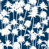 Vector Palm trees seamless pattern. Vector Palm trees illustration for your business Stock Photo
