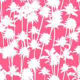 Vector Palm trees seamless pattern. Vector Palm trees illustration for your business Royalty Free Stock Photo