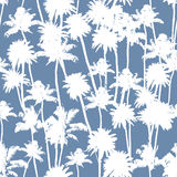Vector Palm trees seamless pattern. Vector Palm trees illustration for your business Royalty Free Stock Photography