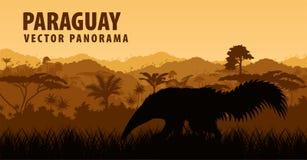 Vector Panorama mit Ameisenbären in Paraguay, Südamerika Lizenzfreie Stockfotos