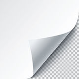 Vector paper curl Stock Images
