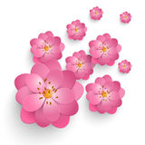Vector paper cut sakura flowers. Floral volumetric composition. Elegant element for invitaion cards Stock Photography