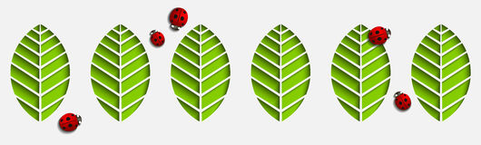 Vector paper leaves and ladybugs. Abstract 3D Geometrical Design with drop shadows. Cut out on a white background seamless pattern Stock Images