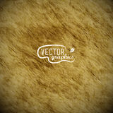 Vector paper texture Stock Photo