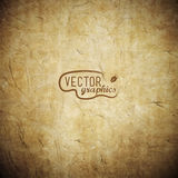Vector paper texture Royalty Free Stock Photography
