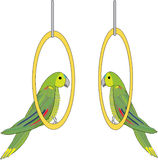 Vector. parrots Stock Photos