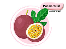 Vector Passion fruit isolated on color background,illustrator 10 eps Stock Images
